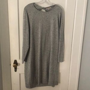 Loft Plus Sweater Dress